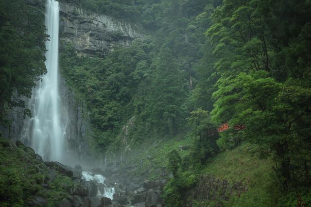 新緑と那智の大滝