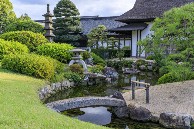 日本庭園(岡山後楽園)